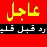 رئاسة الجمهورية .. تصدر مرسوما بتعيين 9 مستشارين ( اسماء )