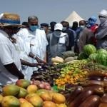 كورونا يضرب قطاع الزراعة في موريتانيا بقوة