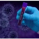 تسجيل 115 حالة شفاء و4 وفيات و268 إصابة جديدة بفيروس كورونا